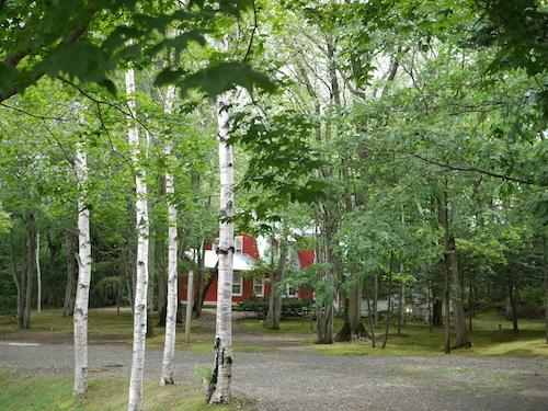 삿포로 예술의 숲