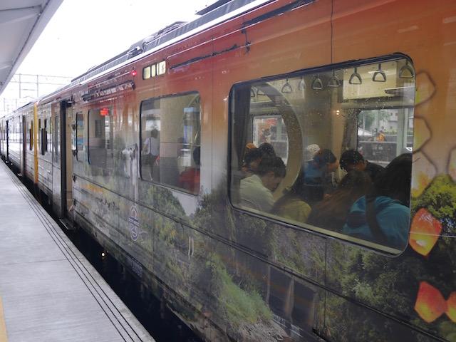 핑시선 열차